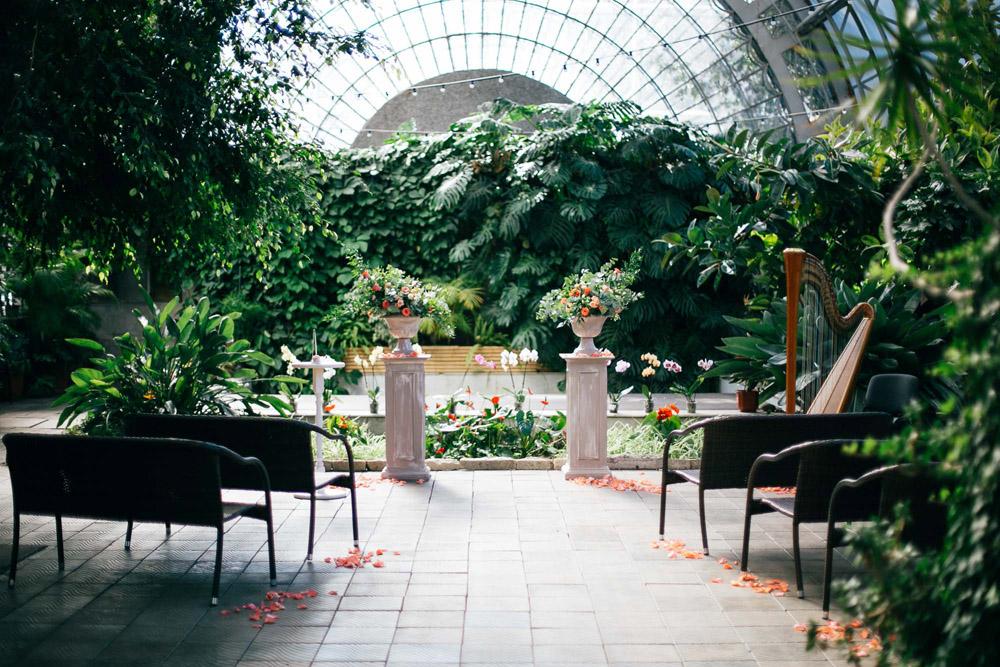 оранжерея ботанического сада спб свадебные фото после-фото, отзывы клиентов